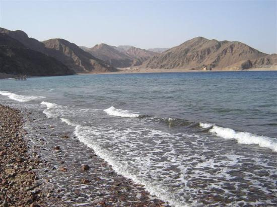 El Wekala Golf Resort: Enviroment of beach
