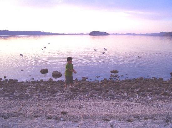 Bahía Concepción : La escondida beach next to posada concepcion
