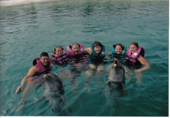 Puerto Plata Village Resort: swimming with dolphins