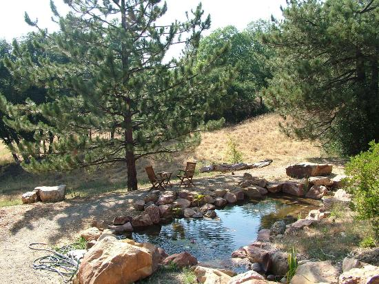 Julian, Kaliforniya: the pond