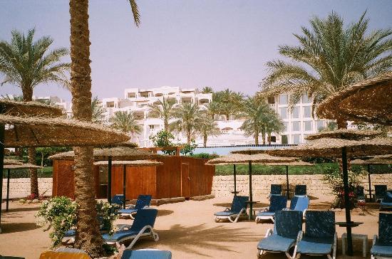 Continental Garden Reef Resort: nice grounds