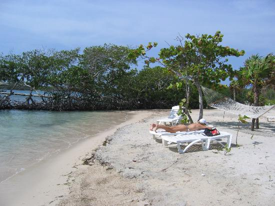 Barefoot Cay Resort: Beach in front of House