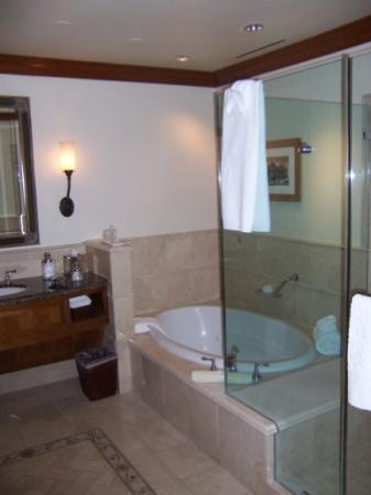 The Rose Hotel Standard Guestroom Bathroom with 2 person jacuzzi tub and 2 person shower...