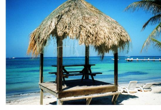 Las Rocas Resort & Dive Center: Palapa on West Bay Beach