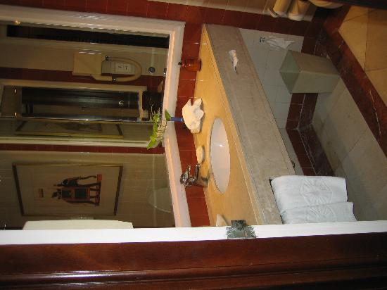 Vivanta by Taj - Bentota : Bathroom (kind of small)