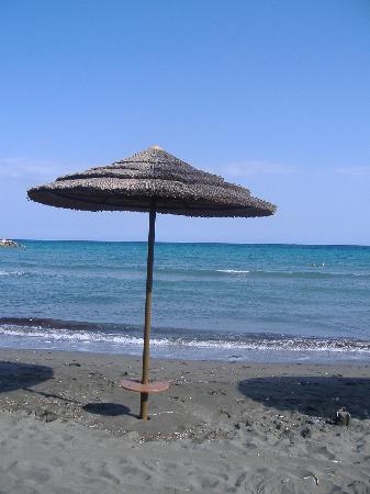 Mediterranean Beach Hotel: The Beach