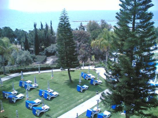 Mediterranean Beach Hotel: Gardens