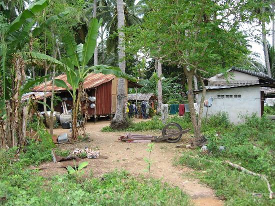 Amari Koh Samui: Angthong Marine Park, village we visited
