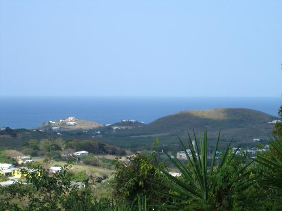 view from villa greenleaf