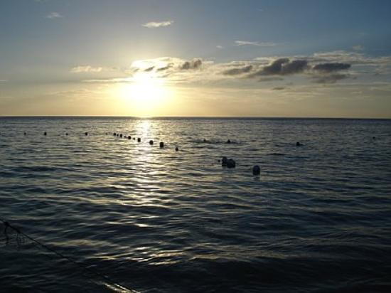 Island Pearl: One of a hundred sunset pics we took.