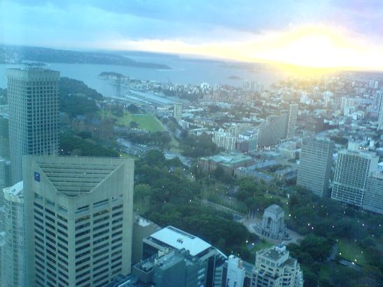 Meriton Serviced Apartments World Tower: View from apartment lounge room