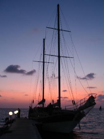 Veligandu Island Resort & Spa : The 'dolphin cruise' boat