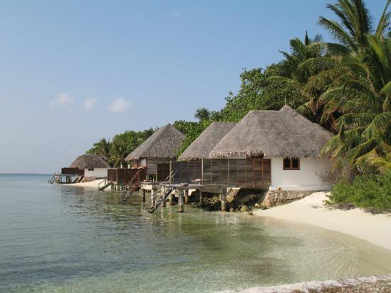 Veligandu Island Resort & Spa : Deluxe Beach Bungalows
