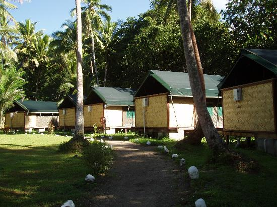 Mango Bay Resort: The Safari Tents
