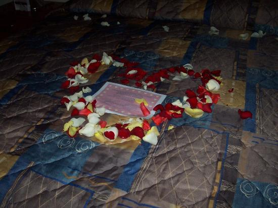 Quality Inn East Windsor: Look at the heart made of rose petals!