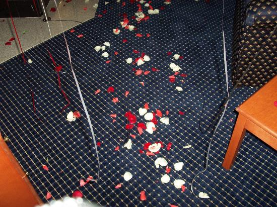 Quality Inn East Windsor: A path of rose petals!