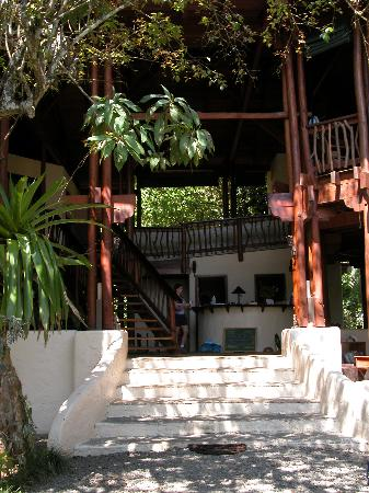 Playa Nicuesa Rainforest Lodge: Lodge Check-in