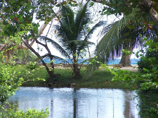 Frenchman's Cove Resort : Just beautiful...