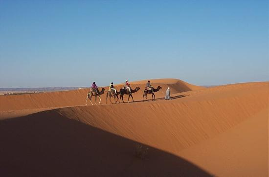 Merzouga, Marocko: Taking camels to watch the sunrise