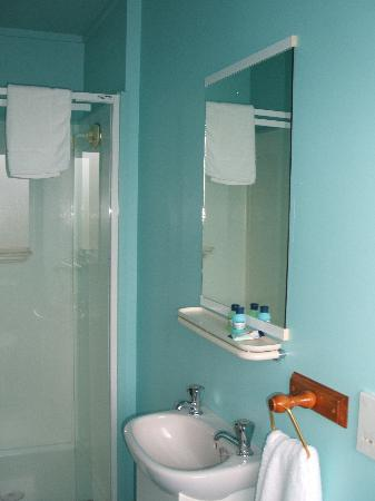 Howards Mountain Lodge: En suite bathroom