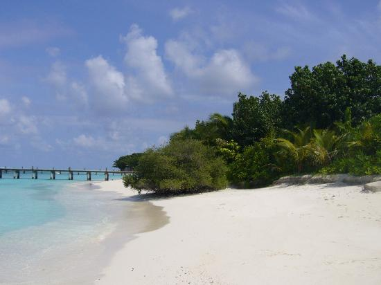 COMO Cocoa Island, The Maldives Photo