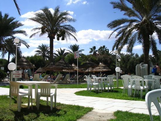 Hotel Marhaba Beach: out the back near the pool