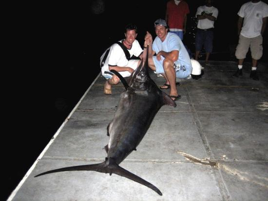 Gaia Hotel & Reserve: Caught off of Quepos... 10ft 550lbs Black Marlin