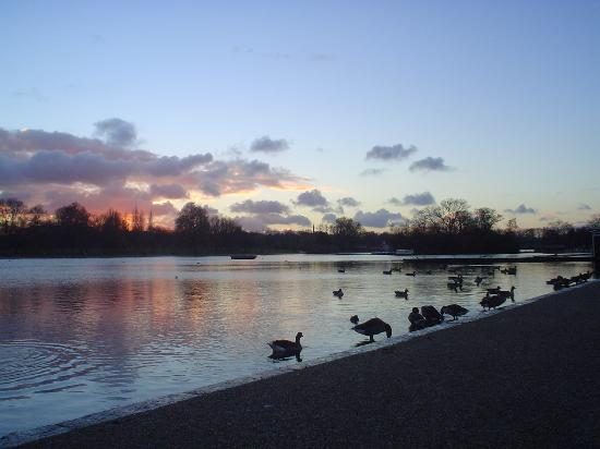 Londres, UK: Hyde Park