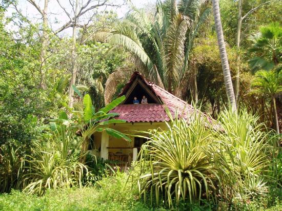 Ylang Ylang Beach Resort: Coco Joes