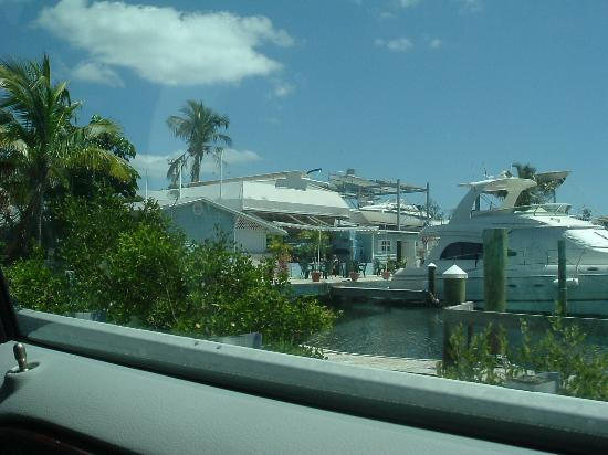 Dolphins Plus - Key Largo: View of the bar area