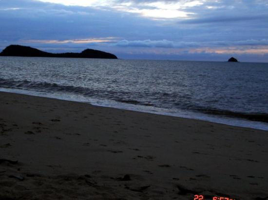 Alassio Palm Cove: Scout Hat Island (right), from the beach directly across the street in front of Alassio.