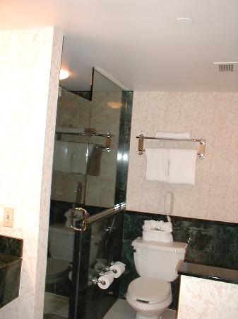 The Watergate Hotel: bathroom -- separate shower and tub on either side of toilet
