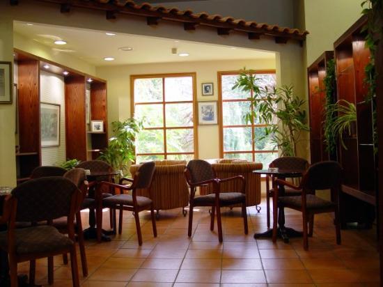 Pastoral Hotel - Kfar Blum: Library just off lobby