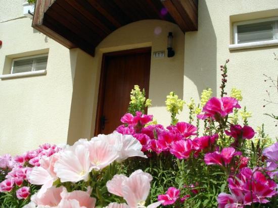 Pastoral Hotel - Kfar Blum: Beautiful flowers everywhere