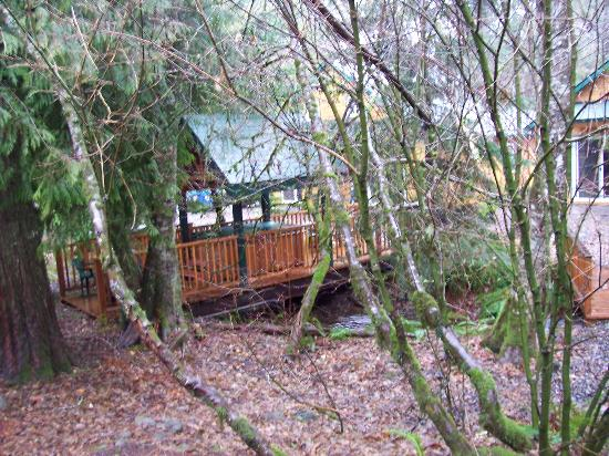 The Cabins Creekside at Welches: View out back of hot tub