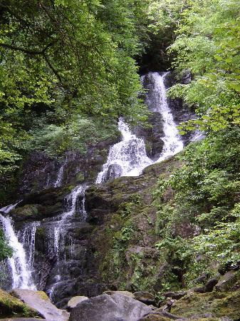 Hrabstwo Kerry, Irlandia: Torc Waterfall Killarney