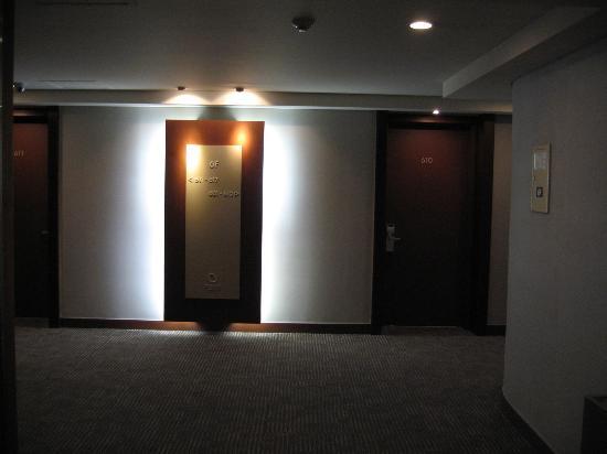 Metro Hotel: hallway
