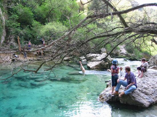 Maison d'hôtes La Guillone : Swimmer - Fontaine de Vaucluse