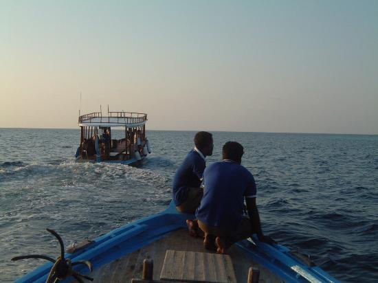 Veligandu Island Resort & Spa: Heading out to catch tea