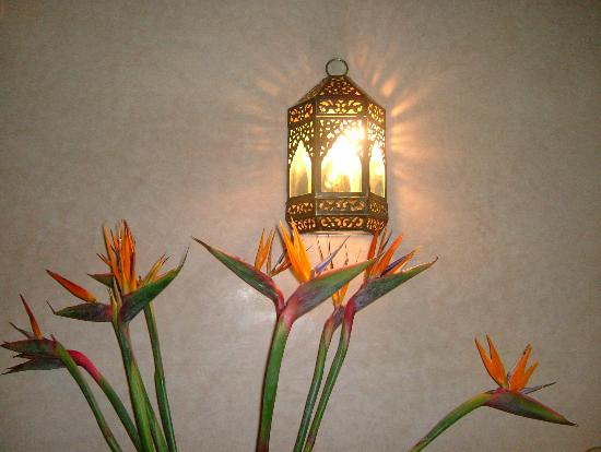 Riad Kniza: flowers (birds of paradise) in our suite