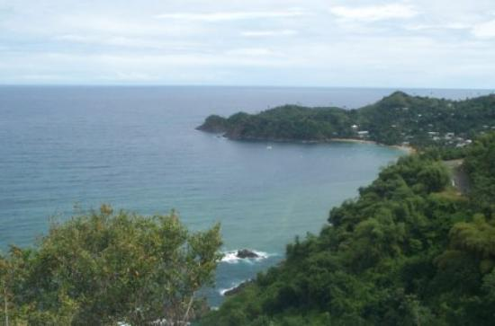 Paradise Point Villas : Castara Bay (View #1 from Villa)