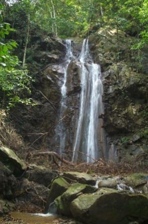Paradise Point Villas : Waterfall on Nature Trail