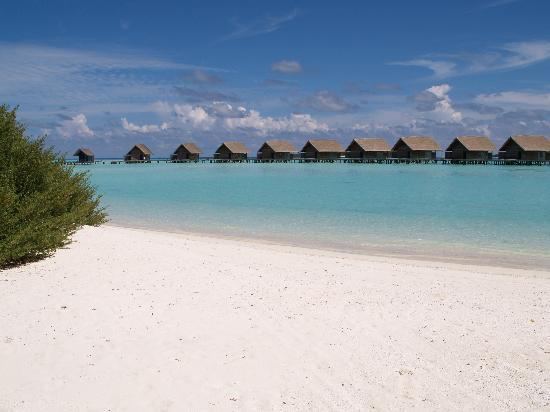 COMO Cocoa Island: Paradis