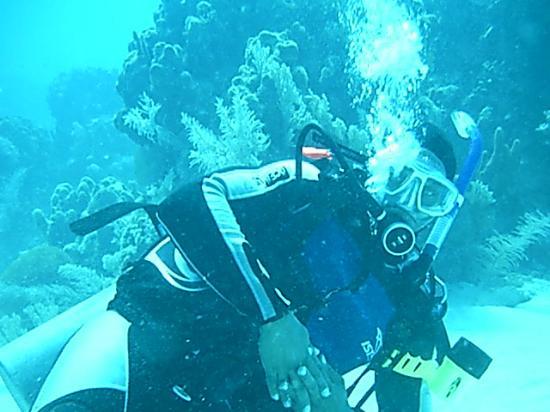 Hamanasi Adventure and Dive Resort照片