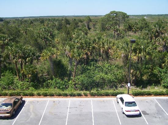 Hampton Inn Titusville / I-95 Kennedy Space Center: Rear of Hotel, view from our room