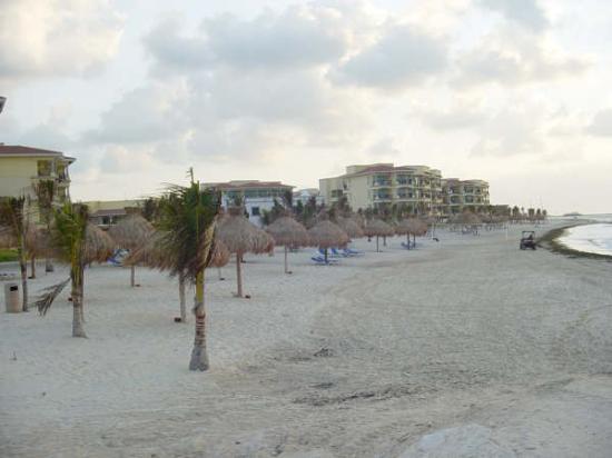 Hotel Marina El Cid Spa & Beach Resort: El Cid Beach