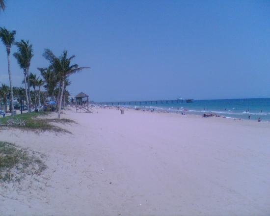 Tropic Isle Beach Resort: On the Beach, also looking north