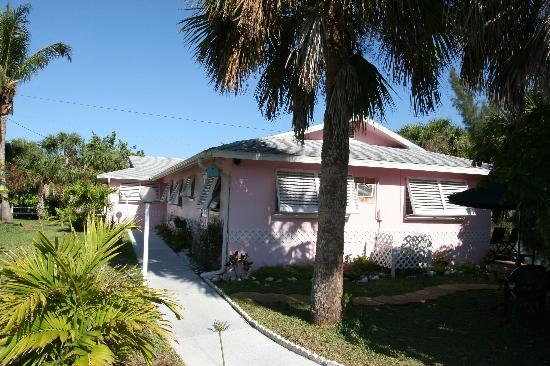 West-End Paradise: Pink Paradise!
