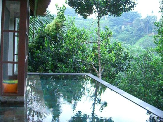 Hanging Gardens of Bali: view of our private pool