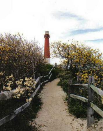 New Jersey: Barnegat Light House 172 feet high